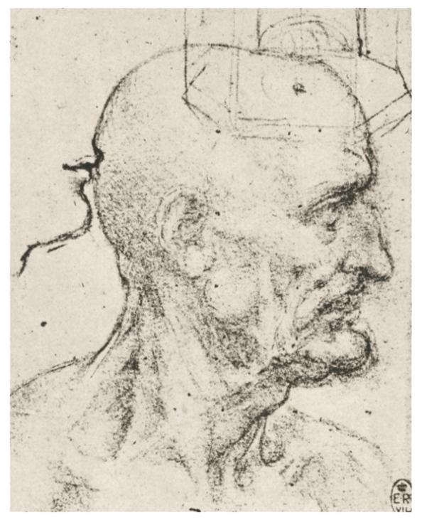 Набросок мужской продырявленной головы