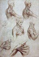 Наброски Леонардо да Винчи