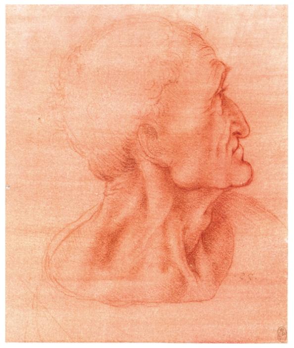 Голова пожилого человека