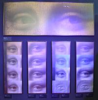 Изучение глаза Моны Лизы